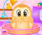 game Baby Owl Care