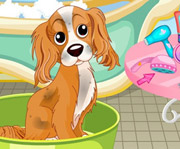 game Blondie Lockes Pet Day