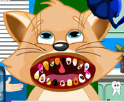 game Cat Dental Care