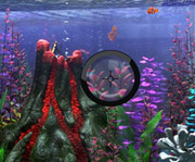 game Finding Nemo Hide and Seek