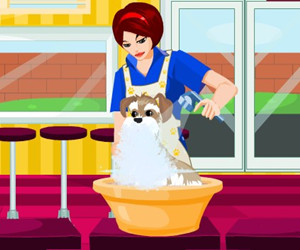 game Pet Salon