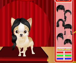 game The Cutest Puppy Competition